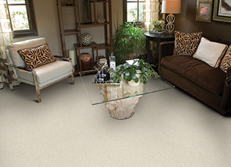 Shop our Featured Premier Stainmaster Pet Protect flooring in the Online Product Catalog.